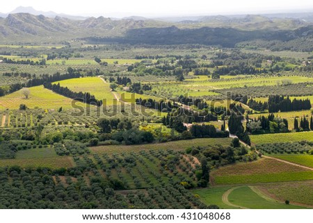 Europe,France,Les Baux de Provence (medieval city),Les Baux Valley, views of olive groves and vineyards in the valley below the castle keep.