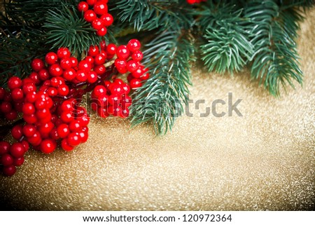 european holly anf fir-tree on golden background, shallow DOF - stock photo