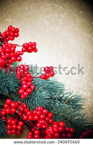 european holly anf fir-tree on golden background, shallow DOF  - stock photo