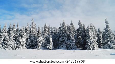 European Mountains - Krkonose - stock photo