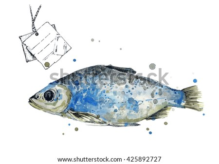 European roach. Fish. Watercolor illustration of fish, isolated on white background. Hand drawn watercolor painting European roach. Poster for seafood menu. Fish with label. Label.