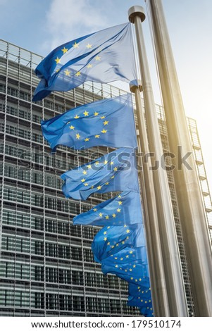 European Union flags  - stock photo