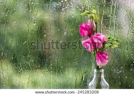 Eustoma flowers against window pane in rainy day.
