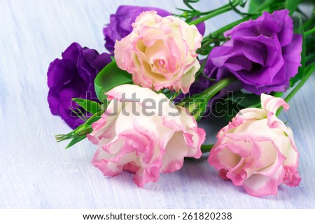 Eustoma flowers close-up on wooden background. Shallow DOF, focus on foreground. - stock photo
