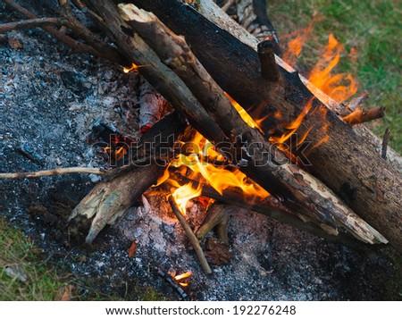evening burning bonfire - stock photo