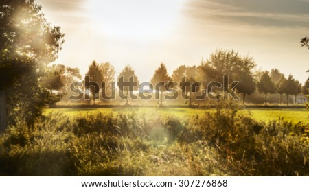 Evening countryside landscape  with bright sunshine, grass and trees  - stock photo