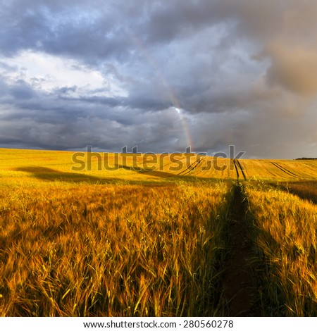 Evening Field With Rainbow Landscape/ Rainbow Landscape - stock photo
