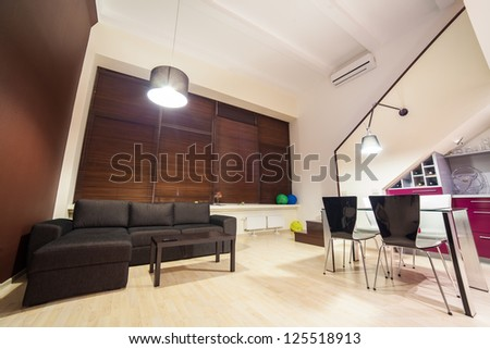 Evening in modern and cozy loft type flat