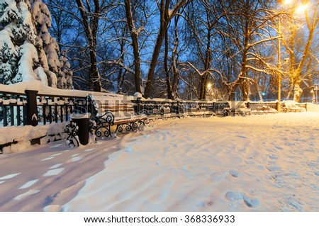 Evening in the park - snowy bench under trees lights.