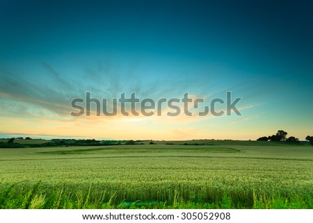 Evening landscape. Beautiful sunset or sunrise over green summer field meadow with dramatic red sky, - stock photo