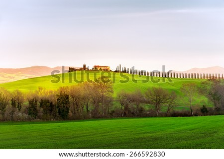 Evening landscape of Val d'Orcia province. Tuscany, Italy. - stock photo
