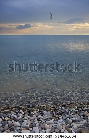 Evening landscape. The Black Sea and stone coast in Arhipo-Osiovka, Russia