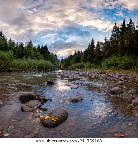 Evening landscape with a mountain river, majestic clouds in sky. Carpathian forest - stock photo