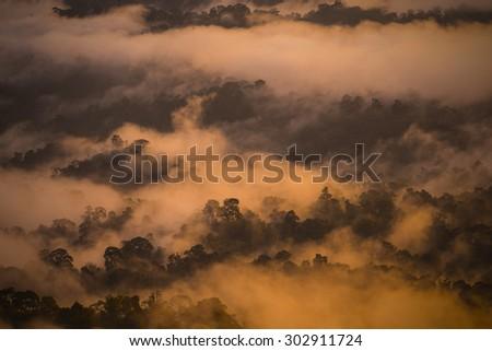 Evening mist in the nature at kaengkrachan park. - stock photo