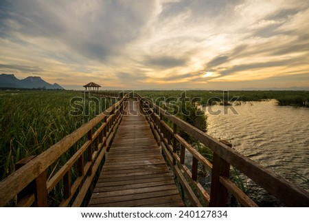 Evening on a wooden walkway in the lake, Sam Roi Yod National Park, Thailand