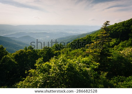 Evening view from Crescent Rock, in Shenandoah National Park, Virginia. - stock photo