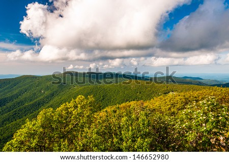 Evening view of the Blue Ridge from Hawksbill Summit, Shenandoah National Park, Virginia.