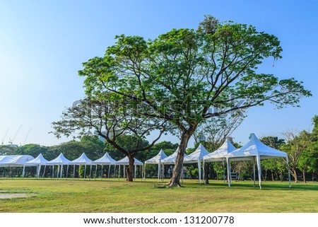events marquee tent and big tree - stock photo