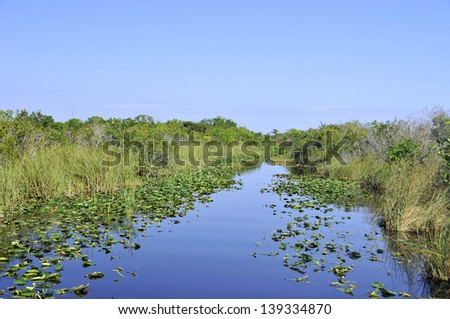 Everglades landscape Florida - stock photo
