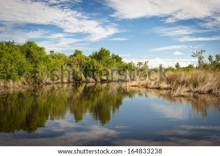 Everglades scenic - stock photo