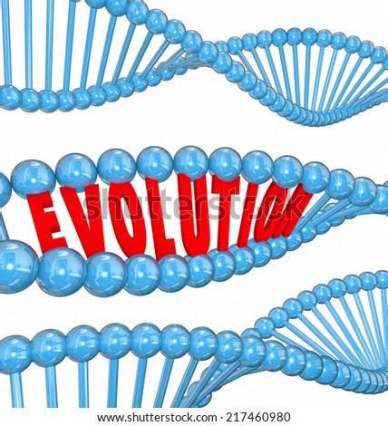 Evolution Word Red 3d Letters Strand Stock Illustration 217460980
