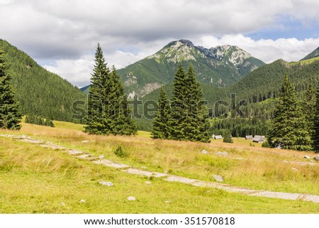 Exceptionally beautiful and valuable areas are protected in national parks as glade Polana Chocholowska i summit Kominiarski Wierch