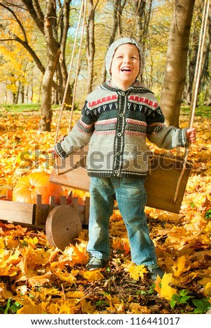 excited little boy on a swing outdoor, autumn leaves on background