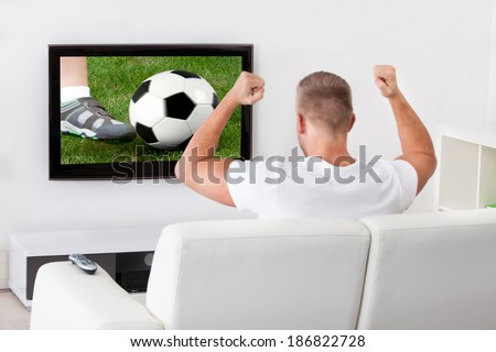 Excited soccer fan watching a game on television holding a soccer ball above his head as he sits on a comfortable sofa in his living room - stock photo