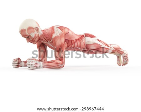 exercise illustration - plank - stock photo