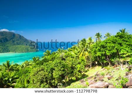 Exotic Backdrop Palm Island - stock photo