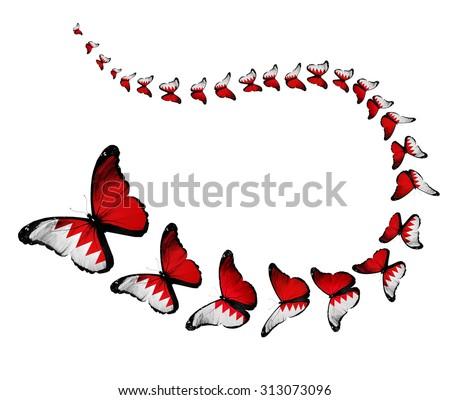 Exotic Bahrain Flag Butterflies Flying On Stock Illustration - Bahrain flags