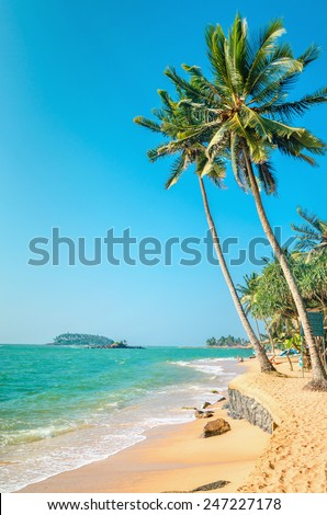 Exotic beach with tall palm trees and azure water, Sri Lanka, southern Asia - stock photo