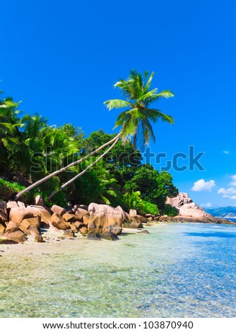 Exotic Dream Heaven - stock photo