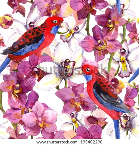 Exotic floral pattern - parrot bird, blooming orchid flowers. Seamless wallpaper. Watercolour. - stock photo
