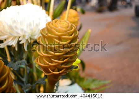 big exotic flower stock photos, royaltyfree images  vectors, Beautiful flower