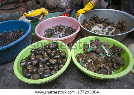 Exotic food in Hanoi, Vietnam. - stock photo