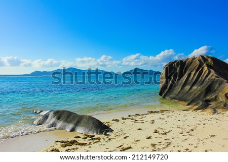 Exotic Nature Coconut  - stock photo