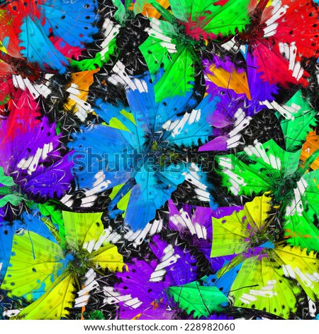 Exotic of vivid and colorful background texture made of Leopard Lacewing butterflies - stock photo