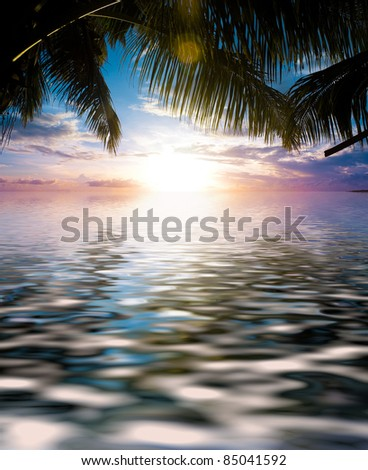 Exotic Outdoor Under Palm - stock photo