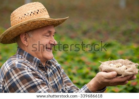 Experienced senior farmer is carrying a nest of small quail eggs. He is looking at it with gentleness and smiling. The man is standing in the green meadow