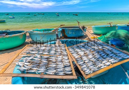 Exposure dried fish on the grill basket boat fish are dried on a basket boat in the distance is the boat, oars and true blue sea of peaceful fishing village of Vietnam
