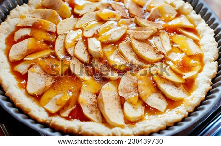 exquisite and tasty home baked apple pie - stock photo