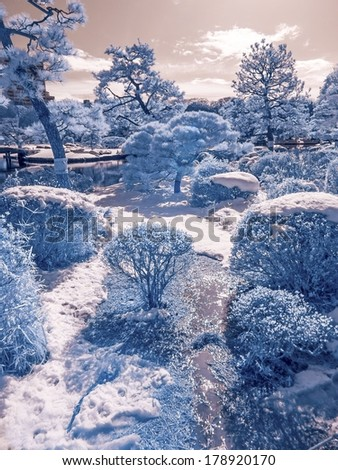 Extended infrared images of a Japanese park in winter. - stock photo