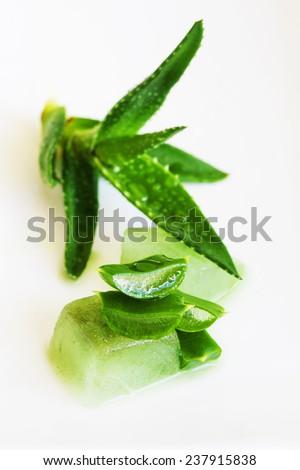 Extract of organic aloe vera gel on white background - stock photo
