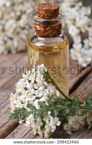 extract of yarrow in a bottle with flowers on the table. vertical macro   - stock photo