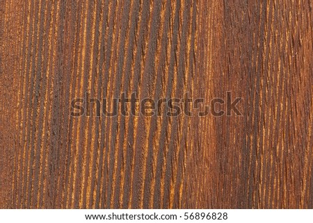 Extreme close up of pine wood plank. Focus across entire surface.