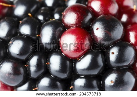 Extreme closeup of blackberry.  - stock photo