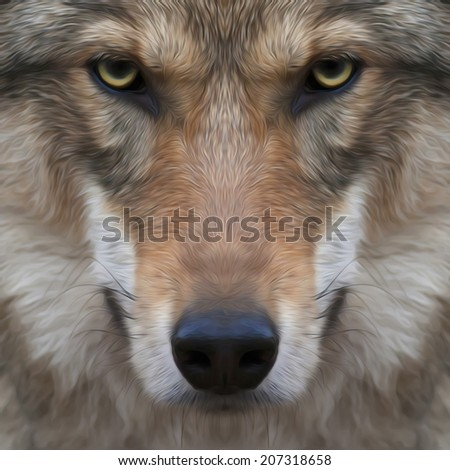 Eye contact with a severe wolf. Menacing expression and awful charm of the wolf, beautiful animal and dangerous beast. Amazing image in oil painting style. Great for user pic, icon, label or tattoo. - stock photo