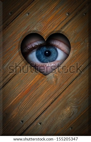 eye in a wooden wall background