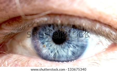eye macro - stock photo